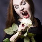 140126_0313_Vampir_frontal_entsättigt